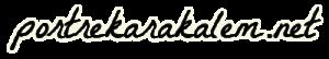 Karakalem Portre Çizim Siparişi / Kargo dahil & Beğenme garantili